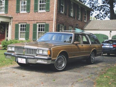 1988 Pontiac Safari for sale