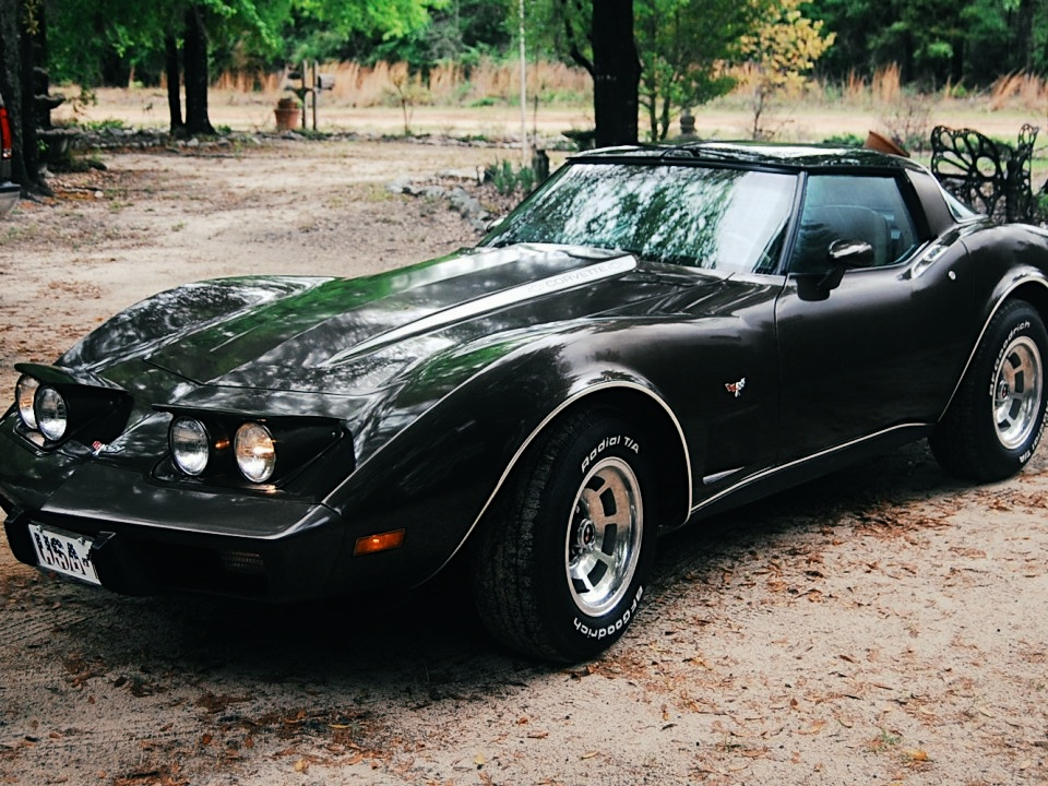 1979 chevrolet corvette c3 for sale 2 for sale. Cars Review. Best American Auto & Cars Review