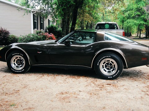1979 Chevrolet Corvette C3 for sale