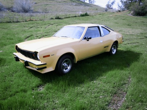 1977 AMC AMX Hornet for sale