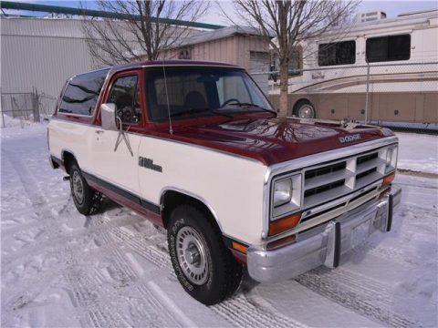 1987 Dodge Ram for sale