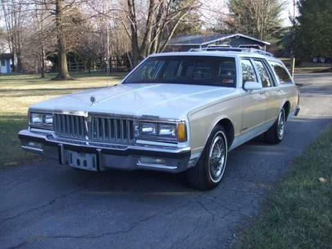 1989 Pontiac Safari for sale