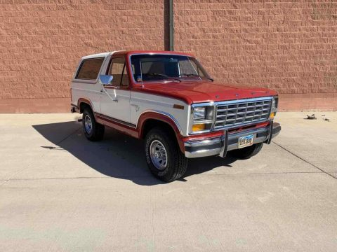 1981 Ford Bronco for sale