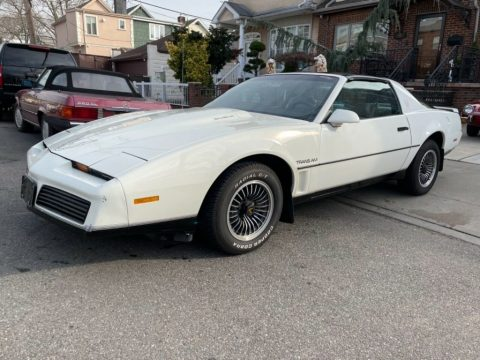 1984 Pontiac Firebird for sale